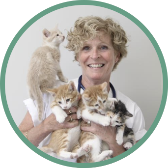 michele-potvin-veterinaire